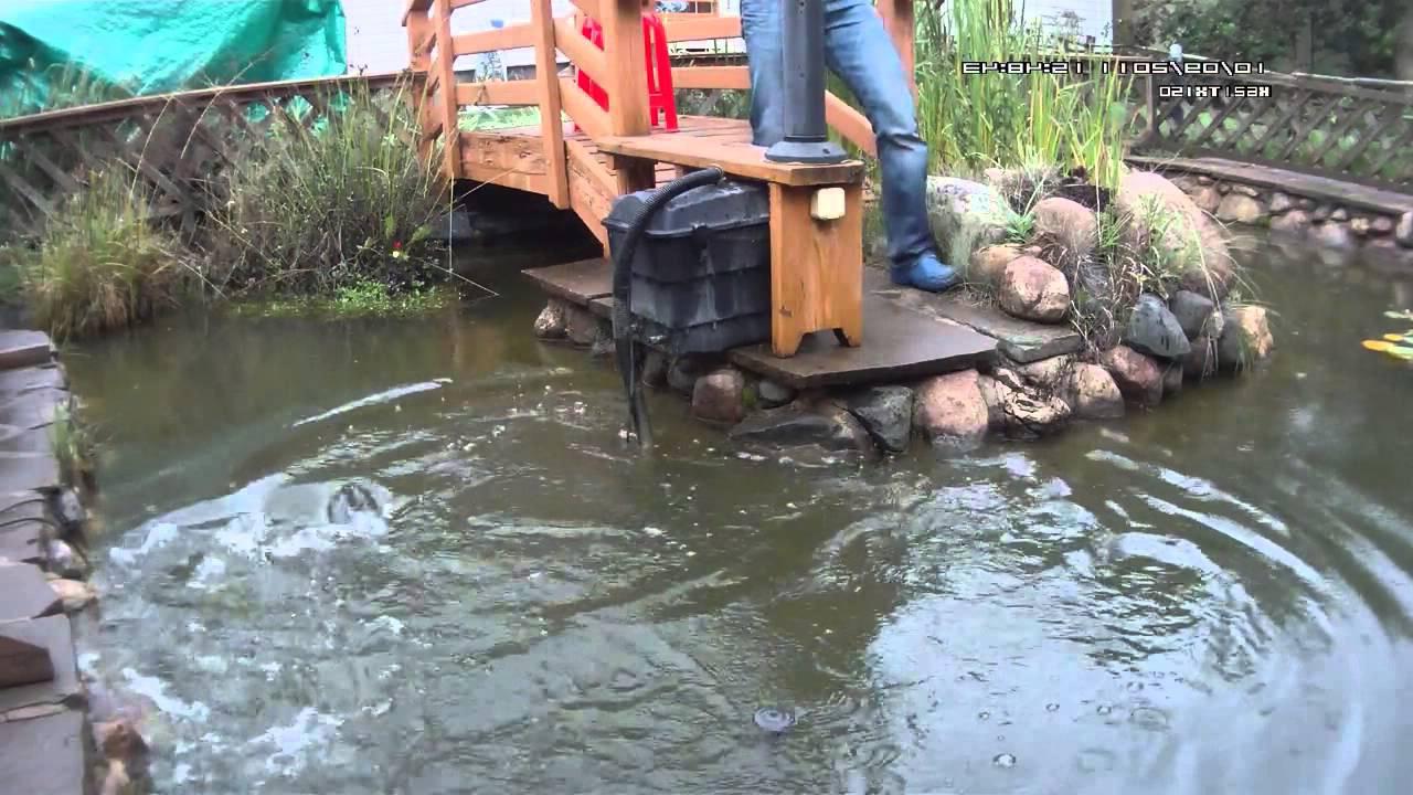Разведение рыбы и раков в озере