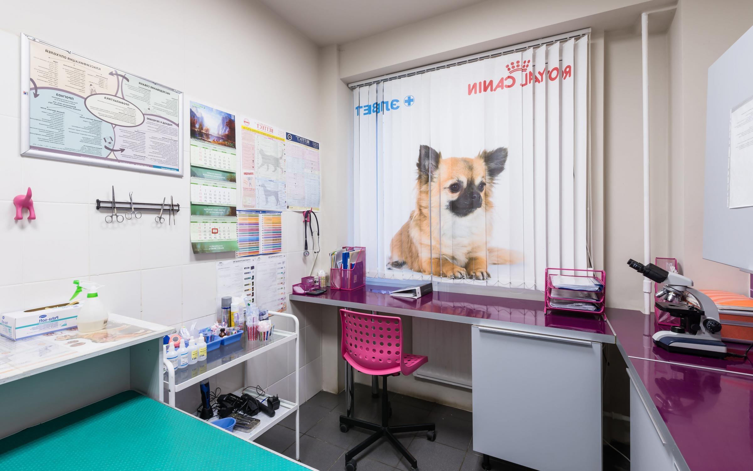 Ветеринарная клиника рядом с метро ВДНХ