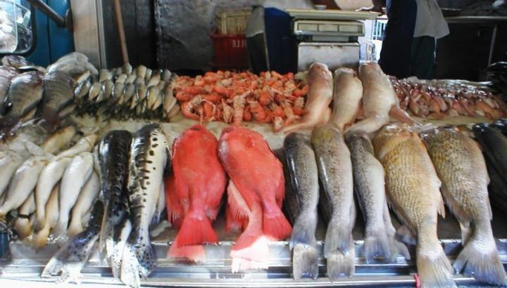 Интернет-Магазин морепродуктов
